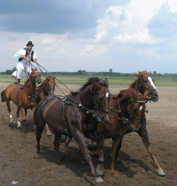 The famous Bugaci horse riders out on the puszta ....